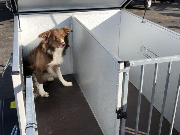 TPV Hundeanhänger, geschlossener Kastenanhänger, Einachser, leichter Anhänger, Anhänger für Hundetransport, für 2 oder 3 Hunde, Check Trailers 10