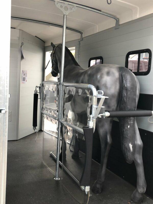 Humbaur Notos Xtra UP, Pferdeanhänger, Pferdetransporter, anhänger für Pferdetransport von bis zu 2 Pferden, Check Trailers 3