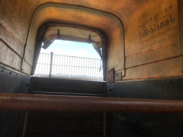 Gebrauchter K. K. Pferdeanhänger, 1300 kg, Check Trailer 9